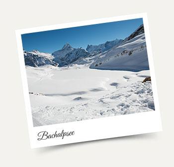 Visit the Bachalpsee in the Jungfrau Region