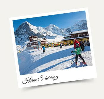 Skiing, Sledging, Snowboarding at Kleine Scheidegg