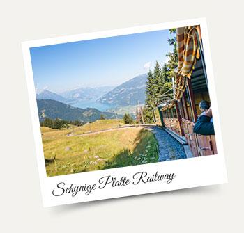 Schynige Platte Cogwheel Railway visit from Wengen