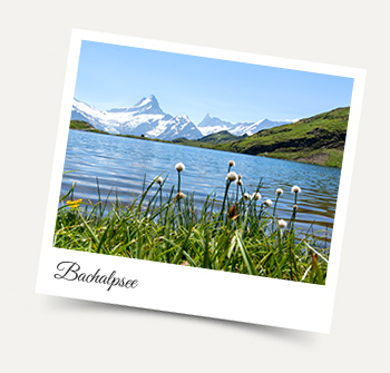 Stay in our Wengen apartments and take a Wengen excursion to the Bachalpsee.
