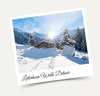 Winter Hike Wengen