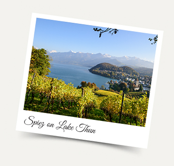 Visit Spiez on Lake Thun from our Wengen apartments and chalets